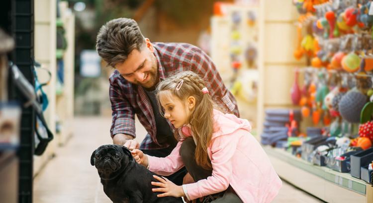 equipamentos para pet shop