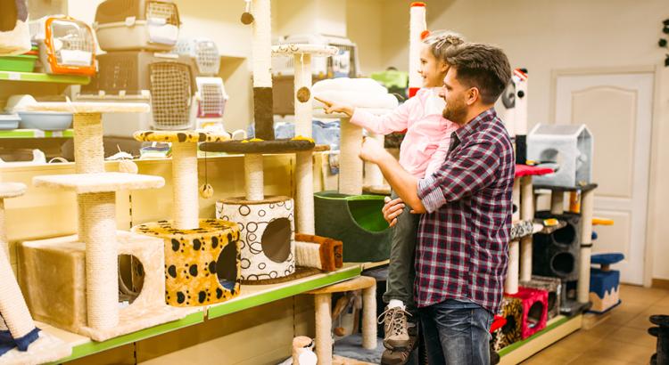 inovar no pet shop