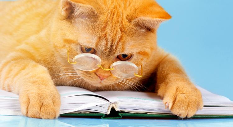 livros pet shop
