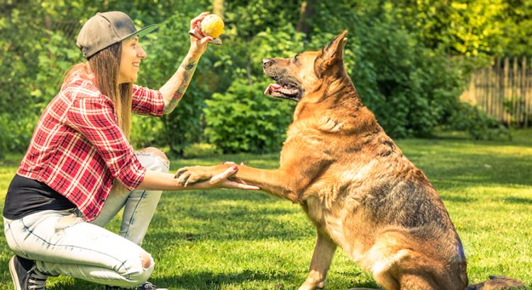 Mulher brincando com o seu cachorro em um quintal com grama