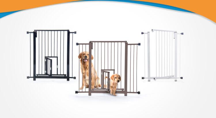 cachorros com portões e grades golden